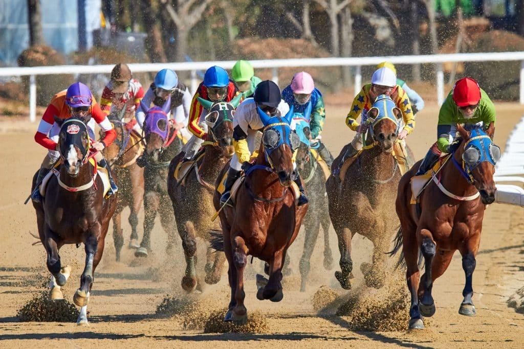 地方競馬について知るべき情報をそれぞれまとめて解説
